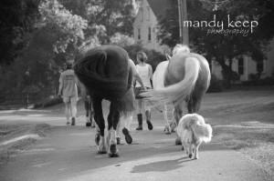 mandy keep driveway